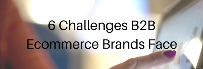 6 Challenges B2B Ecommerce Brands Face