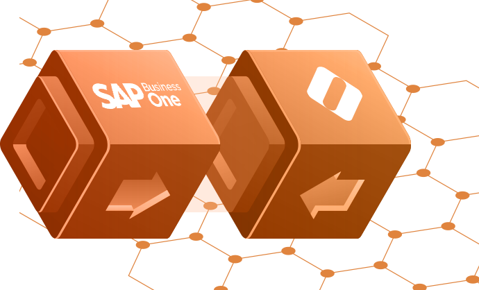 SAP Business One eCommerce Integration - B2B eCommerce for SAP B1