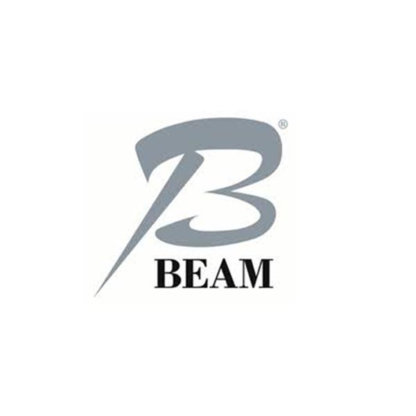 Beam Group Logo