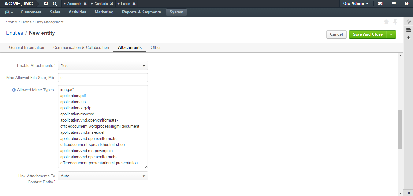 Basic properties available under the attachments section of an entity record page
