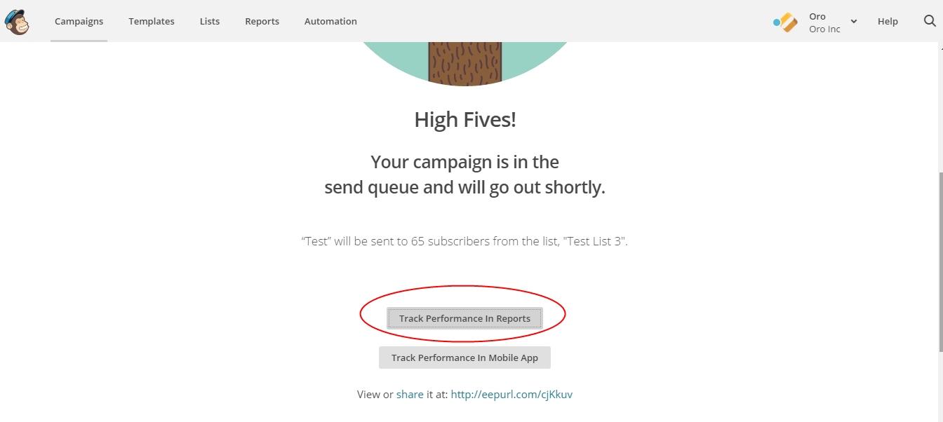 ../../../_images/mc_campaign_in_queue.jpg