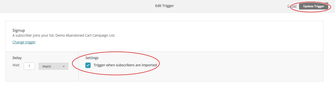 Select the Trigger when subscribers are imported check box and click Update Trigger.