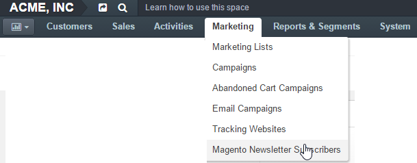 Magento newsletter subscribers section in the main menu